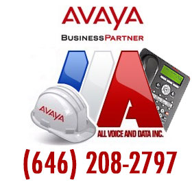 AAA All Voice and Data Inc. -  AVAYA Business Partner